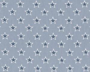 Clark und Clark Baumwoll Deko Stoff regelmäßige Sterne helles tauben blau