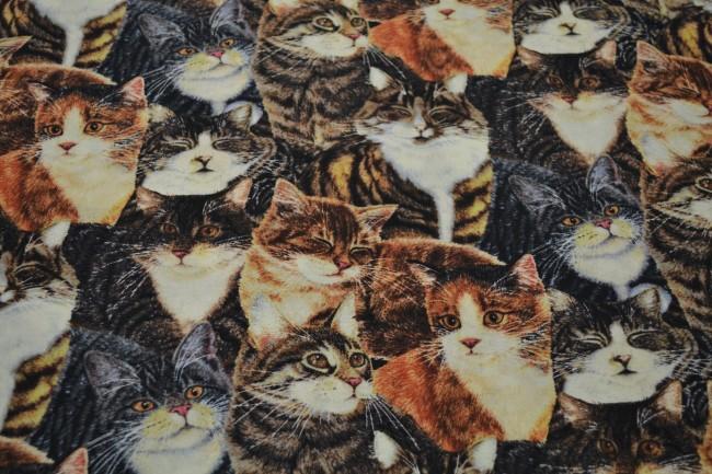 Patchworkstoff Katzen