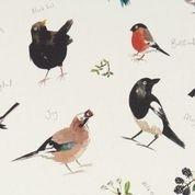 Clark und Clark Baumwoll Canvas/Möbelbezugstoff Vögel